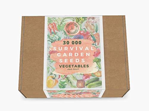 UEYR Semillas de Supervivencia, 300, Semillas Vegetales, Semillas de Frutas, Semillas jardinería Regalo, CREA tu Propio, Regalo de cumpleaños