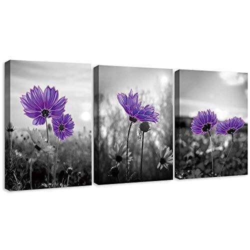 SUMGAR Muur Kunst op Cnavas voor Slaapkamer Madeliefje Bloemen Grijs met een Pop van Kleur Foto's voor Woonkamer Schilderijen, 30x40cmx3pcs