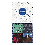 Jimmy Lion Packs de Calcetines Ocean Pack para Hombre y Mujer Talla 36-40. Calcetines...