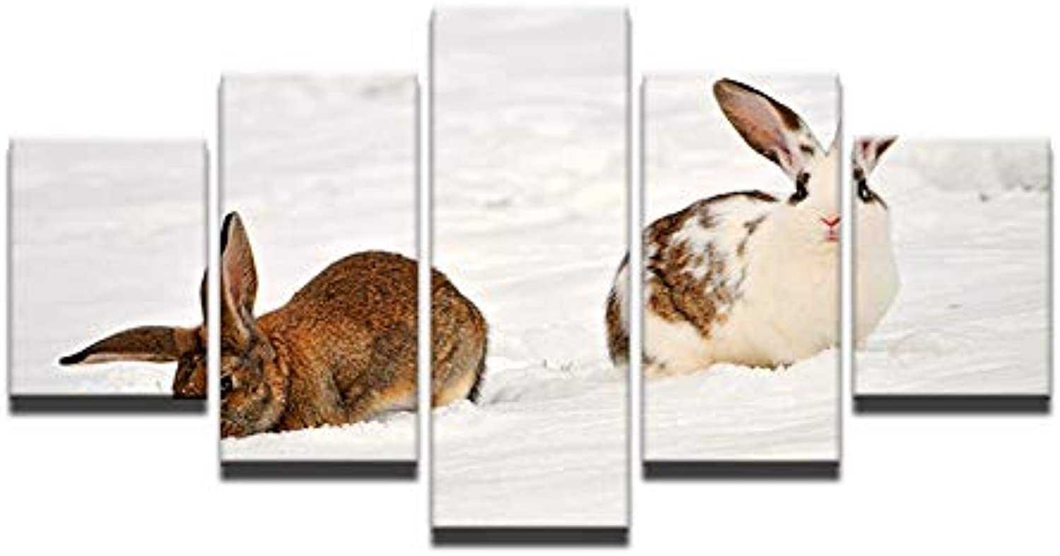 5 Panel Modern Home Art Wall HD Picture Canvas Printings Living Room Decoration Theme Two Brown Rabbit Snow White Snow Field
