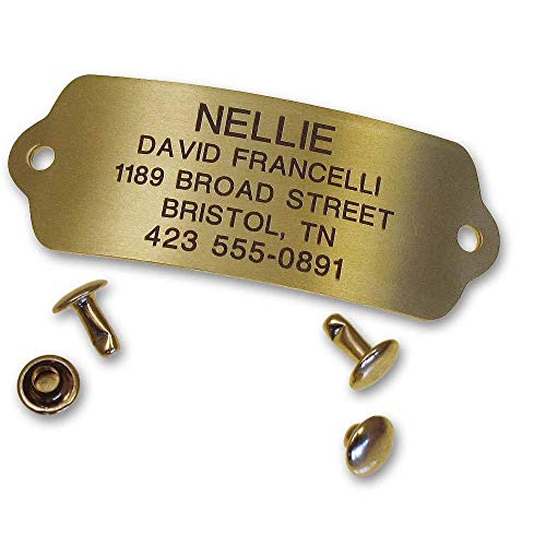 LuckyPet Rivet-On Pet ID Tag, Silent, Personalized and Customized Dog ID Tag That Rivets Directly onto Collar, Polished Brass, Size: Large