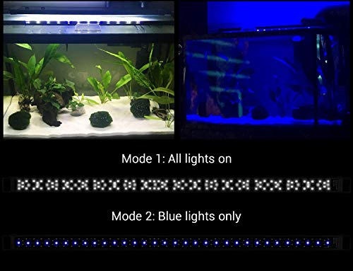 NICREW SkyLED Aquarium Light for Planted Tanks, Full Spectrum LED Fish Tank Light, 48 to 54-Inch, 32-Watt