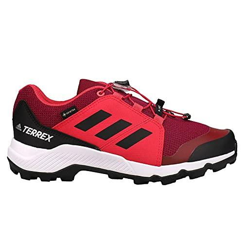 adidas Kids Boys Terrex Gore-Tex Hiking - Hiking Sneakers Shoes Casual - Black,Purple - Size 6.5 M