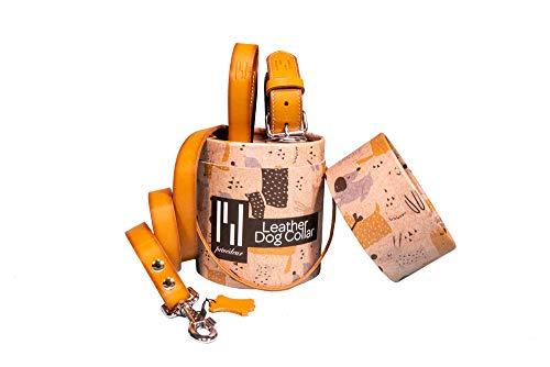 Set van 2 hondenhalsband en hondenriem 'Premium', Halsband 43-50 cm, camel