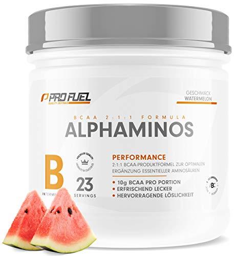 BCAA Pulver – Essentielle Aminosäuren – Leckere Aminos 2:1:1 Leucin, Isoleucin, Valin / 300g WASSERMELONE