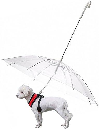 Dog umbrella hat