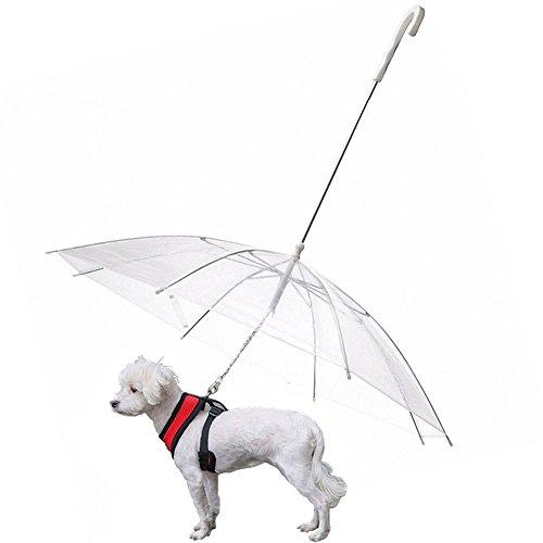 Ombrello pieghevole per cuccioli di cane, da assemblare al guinzaglio, per camminare sotto neve e pioggia, colore trasparente, adatto per animali domestici lunghi 51 cm