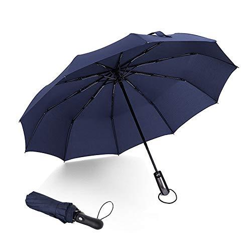 Ombrello pieghevole automatico, 10 costole ombrello da viaggio compatto con pulsante di apertura e chiusura automatico, impermeabile e impermeabile, perfetto per uomini e donne(Blu)