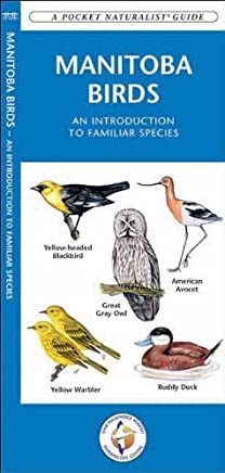 Manitoba Birds: A Folding Pocket Guide to Familiar Species (Pocket Naturalist Guide Series) by James Kavanagh (1-Jan-2012) Pamphlet