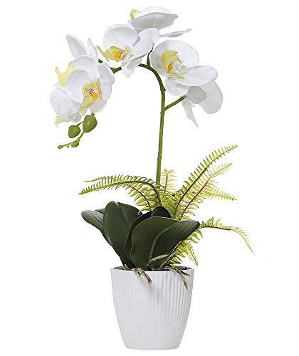 Olrla Blanca phalaenopsis Artificial orquídea Bonsai con cerámica Partido Boda del florero jardín decoración del hogar (Blanco 1)