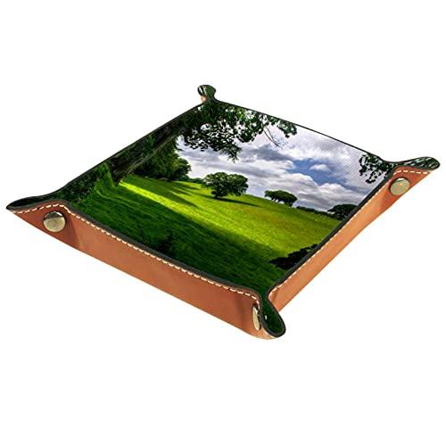 Bandeja de Cuero - Organizador - prado de pasto de primavera - Práctica Caja de Almacenamiento para Carteras,Relojes,llaves,Monedas,Teléfonos Celulares y Equipos de Oficina