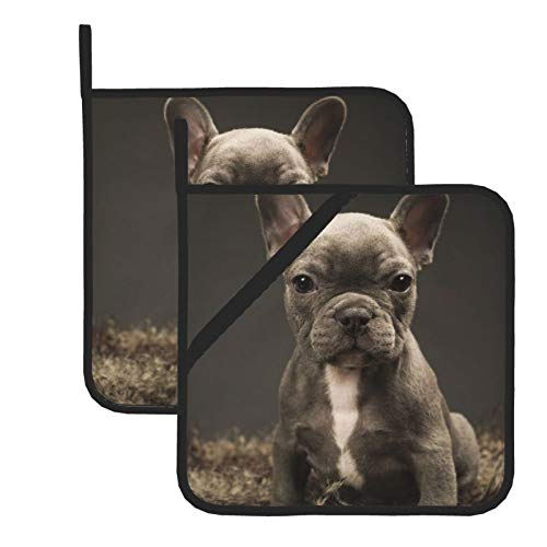 Baby French Bulldog Cute Puppy Pot Holders Sets, Kitchen Heat Resistant Potholders with Soft Cotton Infill for Cooking Baking BBQ Grilling (2-Piece Sets)