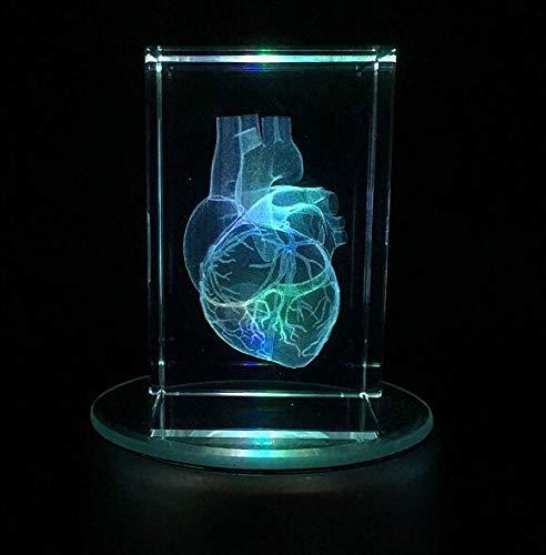 Kristallglas Menschliches Herz Modell Anatomisches Modell Papiergewehr (lasergeätzt) in Cube Science-Geschenk (enthaltene LED-Basis) Kreative Ornamente,8 * 8 * 15cm