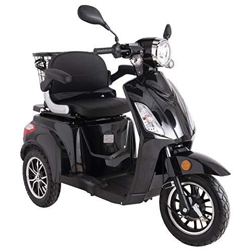 Green Power - Patinete eléctrico ZT500 con 3 ruedas con accesorios adicionales,...
