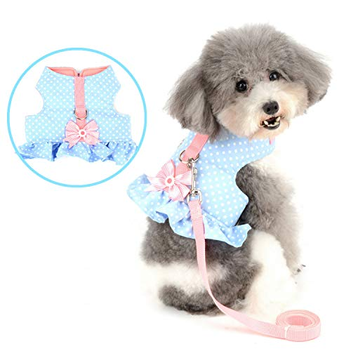 Zunea No Pull Small Dog Girl Harness Dress Escape Proof Cat Kitten Vest Harness Leash Set Step-in Soft Cotton Padded Polka Dot Jacket Chihuahua Puppy Clothes with Cute Bow for Walking Blue M