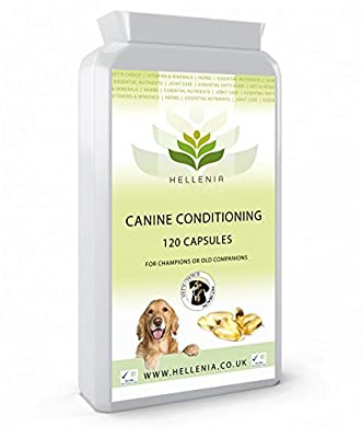 Hellenia Vet's Choice Omega 3, 6, 9 Canine Conditioning Dog Coat Protection - 120 Capsules - Essential Oils Supporting a Healthy Coat & Skin in Pets