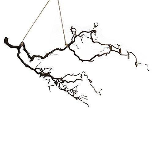 Dekoast mit Sisalseil: Korkenzieher-AST als Deko | Korkenzieherhasel-Deko | hängende Deko | Landhaus-Deko | Vogel-AST, Size_Name:40 cm