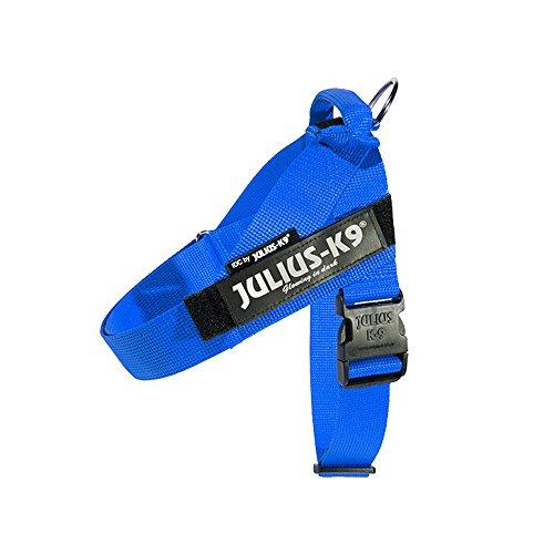 Julius-K9 IDC Innova Dog Comfort Blue Belt Harness