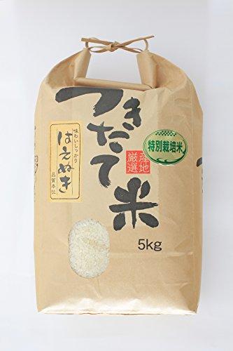 食味最優秀賞受賞農家 山形県大蔵村 柿崎康宏産 特別栽培米 白米 はえぬき 令和元年産 (5kg)