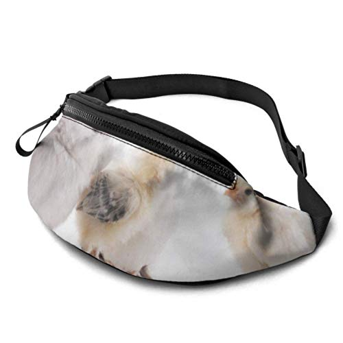 JIUCHUAN Taillenpackung für Teenager-Küken Bunny Rabbit Animal Mens Taillenpackungen mit Kopfhöreranschluss und verstellbaren Trägern Laufende Taillenpackung Männer für Reisesportwandern