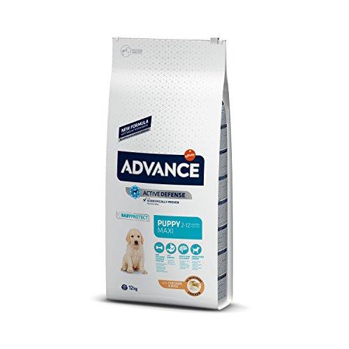 Advance Advance Pienso para Perro Maxi Puppy con Pollo - 12000 gr 🔥