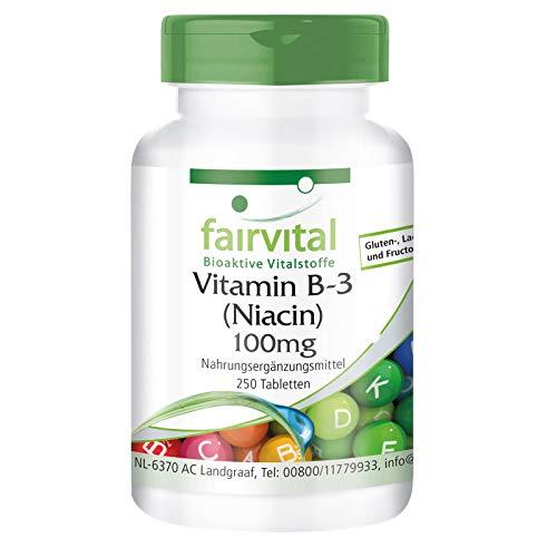 Vitamin B3 Niacin 100mg - HOCHDOSIERT - VEGAN - Nicotinamid - 250 Tabletten