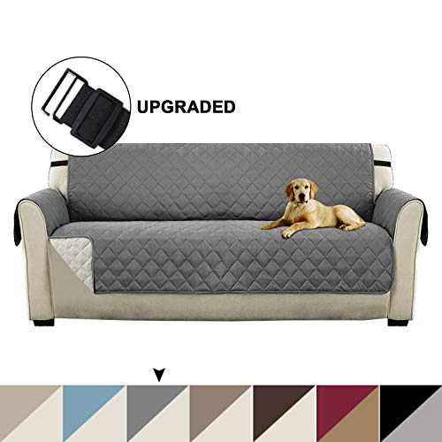 Awesome Top 14 Best Cat Proof Couch Covers In 2019 Pet Struggles Uwap Interior Chair Design Uwaporg