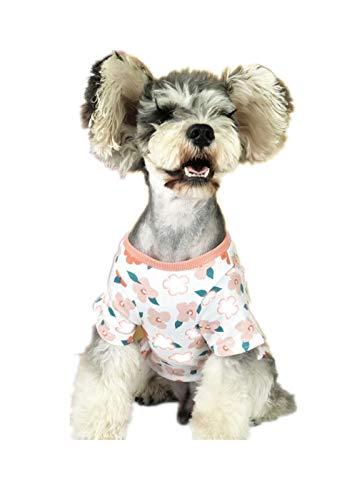 AGQG Haustier Katze Hund Pullover, warme Hund Pullover Cat Kleidung, Fleece Haustier Mantel für Welpen Small Medium Large Dog Teddy Anti Haarausfall Kleiner Hund