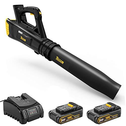 TECCPO Soffiatore a Batteria, 18V 2.0Ah Doppia Batteria e Caricabatterie,Disegno Ventilatori Assiali, 9000/16500 RPM velocità Regolabile, TDAB01G
