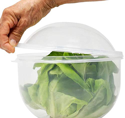 Lettuce Keeper | Vegetable and Fruit Crisper | Lettuce Crisper Salad Keeper Container Keeps your Salads and Vegetables Crisp and Fresh-7' X 8'- by Home-X