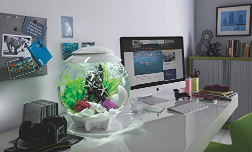 Oase biOrb Deco Aquarium Halo 30 met LED - 30 liter grijs