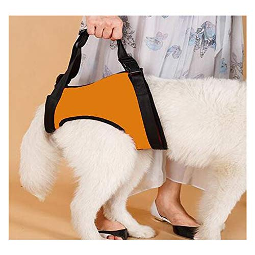 ZMJY Dog Lifting Support Harness, Hilfsgurt für behinderte Hunde an Vorder- und Hinterbeinen, um die Wiederherstellung der Gelenke zu unterstützen,orangehindlegs,L