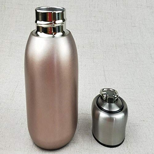 Draagbare 300 ml thermos thee thermosfles met filter RVS thermische beker koffiemok waterfles reizen waterfles