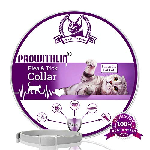 prowithlin Collar Antipulgas y Antigarrapatas para Gatos, Collar Impermeable Ajustable, Solución Natural contra Pestes para Gatos Jóvenes, 36 cm 8 Meses Talla Única para Todos los Gatos