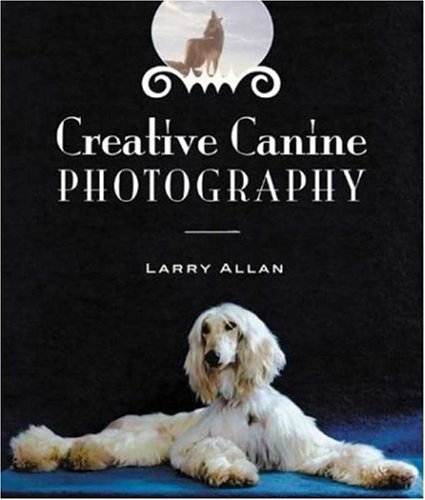 Creative Canine Photography