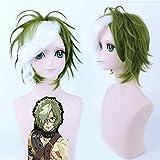 Anime Kabaneri Of The Iron Fortress Cosplay Wigs Ikoma Cosplay Synthetic Wig Hair Halloween Party Koutetsujou No Kabaneri Wig