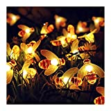 Lihuzmd [2 Paquetes] Luces solares para jardín, Luces solares de...