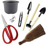 herramientas bonsai kit de herramientas bonsai. Bonsai kit de cuidado de árboles. Incluye, tijeras de poda.corta hojas recortadora y cepillo de limpieza tradicional. Idea única de regalo