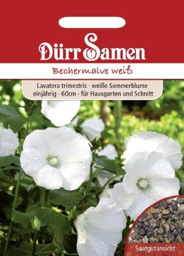 Dürr Samen 1326 Bechermalve weiß (Bechermalvensamen)