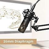 Zoom IMG-2 uhuru microfono a condensatore professionale
