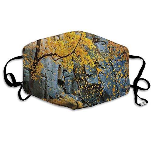 Face Mouth Cover,Kanadische Ahornbäume Fallen Blätter Nach Unten Umgeben Von Malerischen Felsen Steinen Laub Elastische Personalisierte Halbgesichtsabdeckungen,18x11cm
