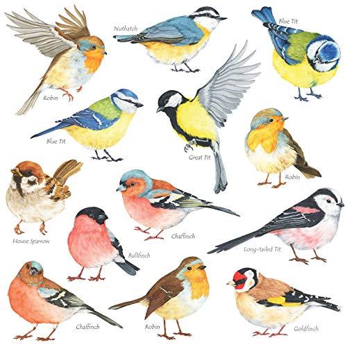DECOWALL DS-8038 Piccoli uccelli (Piccolo) Adesivi da Parete Decorazioni Stickers Murali Soggiorno Asilo Nido Camera Letto per Bambini decalcomanie