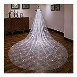 ブライダルベール 1層の女性の白いトレーリングロングウェディングベールスプレーグリッターラインストーンカットトリムブライダルベール 結婚式