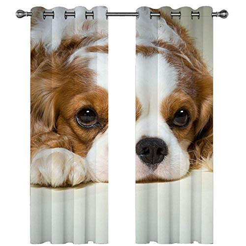 QHDIK Printed Blackout Curtains For Children dog Eyelet Curtain Thermal Insulated Room Darkening Curtains for Children Bedroom Nursery Living Room Set of 2 Panels 46 x 54 inch