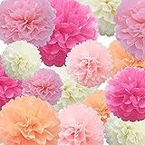 Seidenpapier PomPoms Papierblume 22 Stück Pink, Hellrosa, Pink, Elfenbein, Hellpfirsichpapier Blumenball zum Geburtstag Bachelorette Hochzeit Babyparty Brautparty Partydekoration