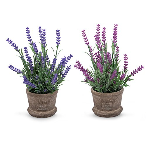 Louis Garden Set of 2 Artificial Mini Potted Plants Home Decoration (Lavender)