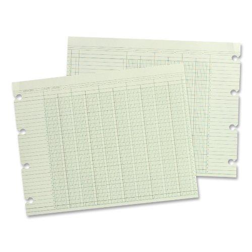 Wilson Jones 24 Columns Accounting Sheets DMi PK 100 Loose Sheets//Pack Green G30-24 11 x 14
