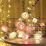 YUANSHOP1 イルミネーションLEDライト バラ ライト 電池式ストリングライト ローズ (20電球 3M長) パーティー/誕生日/結婚式/クリスマス/室内 装飾 ワイヤーライト ロマンチックDIY飾りライト バレンタインデー 記念日 正月 プレゼント (ホワイト+ピンク)