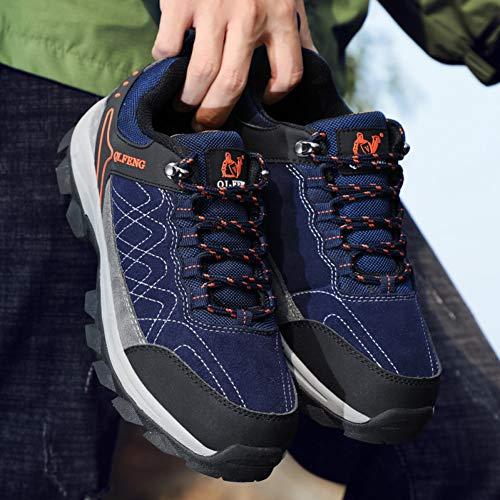 XJWDNX Hombre Zapatillas al aire libre Primavera Otoño Hombres Zapatos de Senderismo Verde Azul Oscuro Zapatos de Trekking Hombres Cómodo Viaje Masculino Zapatillas, azul, 42