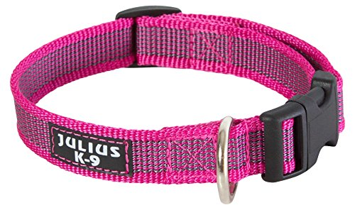 Julius-K9 Collar Color & Gray, 20 mm 27/42 cm, Rosa/Gris